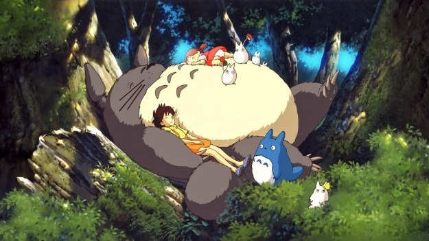 anime-neighbor-totoro_176258